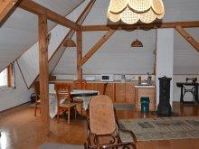 Accommodation Badacsonytomaj, Bálint Apartment