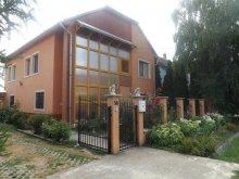 Accommodation Kerecsend, Brigitta Guesthouse