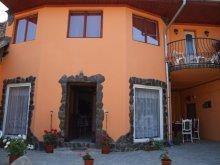 Casă de oaspeți Mustățești, Pensiunea Casa Petra