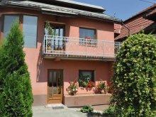 Accommodation Cluj county, Rica Villa