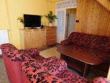 Accommodation Zalakaros, XXL Apartment