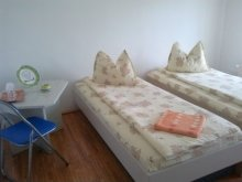 Accommodation Găbud, F&G Guesthouse