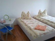 Accommodation Stârcu, F&G Guesthouse