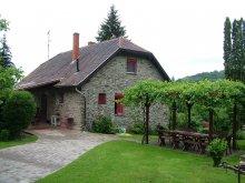Villa Vaspör-Velence, Gereben Villa