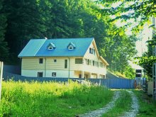 Accommodation Trestioara (Mânzălești), Alice Vila