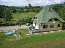 Kulcsosház Maroshévíz (Toplița), Birton Csaba Kulcsosház