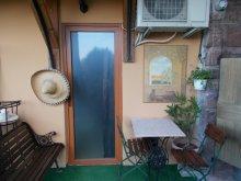 Apartman Alsóörs, Egzotikuskert Apartman - Pálma mini szoba