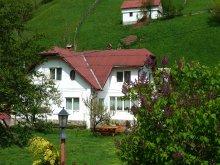Accommodation Gura Pravăț, Bangala Elena Guesthouse