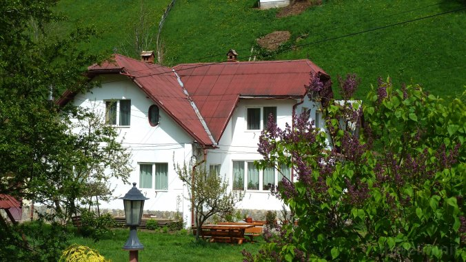 Bangala Elena Guesthouse Moieciu de Sus