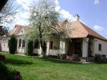 Casă de oaspeți Buda (Berzunți), Pensiunea Ajnád