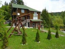 Chalet Saciova, Cserny Csaba Guesthouse