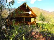 Cabană Gura Cuțului, Cabana Pin Alpin