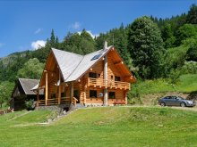 Accommodation Zece Hotare, Larix Guesthouse