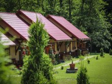 Vendégház Románia, Patakmenti Kulcsosházak és Vendégház (SPA)