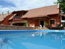 Accommodation Bács-Kiskun county, Villa Medici B&B