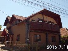 Accommodation Bogata de Jos, Muskátli Guesthouse