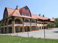 Accommodation Lake Balaton, Közvetlen Vízparti Apartment