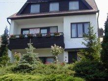 Accommodation Lake Balaton, M&M Apartment (first floor)