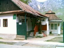 Accommodation Ciumbrud, Gizella Guesthouse