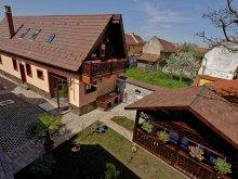 Villa Szásztyukos (Ticușu Vechi), Ambient Villa
