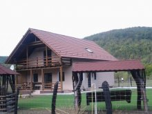 Vendégház Mijlocenii Bârgăului, Fényes Vendégház