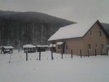 Accommodation Răstolița, Fényes Guesthouse