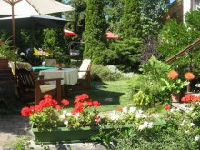 Accommodation Eger, Bacchus Guesthouse