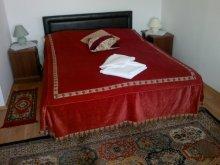Bed & breakfast Kötegyán, Villarubin Guesthouse