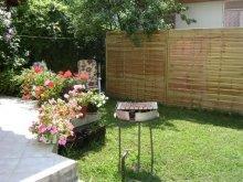 Casă de vacanță Balatonudvari, Apartament Zsuzsanna