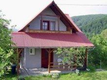 Accommodation Valea Caldă, Brigitta Pension
