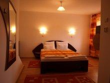 Accommodation Bălcești (Căpușu Mare), Vila Gong