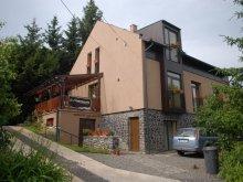 Accommodation Erdőtarcsa, Kétkerék Guesthouse
