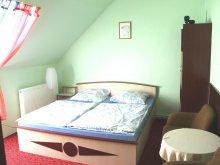 Accommodation Badacsonytördemic, Tibor Apartment