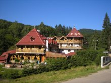Szállás Kurtapatak (Valea Scurtă), Vár Panzió