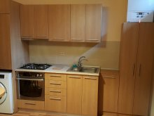 Apartament Dealu Mare, Apartament Brătianu