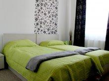 Accommodation Trebeș, Daciana B&B