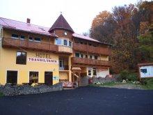 Pensiune Berzunți, Vila Transilvania