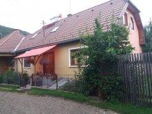 Accommodation Coșnea, János Guesthouse
