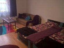 Apartament Pusztaszer, Apartament Lux