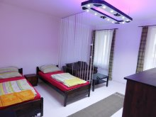 Accommodation Pest county, Frankel Apartment