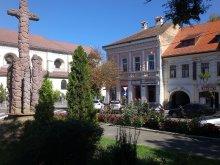 Panzió Szentábrahám (Avrămești), Korona Panzió