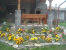 Vendégház Nyikómalomfalva (Morăreni), Kő Vendégház