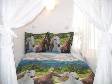 Accommodation Gura Siriului, Corona Vila