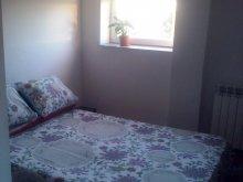 Apartment Mustățești, Timeea's home Apartment