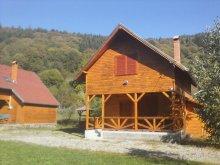 Accommodation Delureni, Nyisztor Chalet