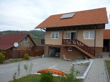 Guesthouse Mateiaș, Denes Eva Guesthouse