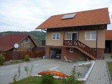 Guesthouse Mercheașa, Denes Eva Guesthouse
