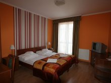 Pensiune Györ (Győr), Pensiunea Hotel-Patonai