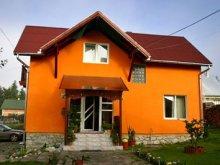 Vendégház Berești-Bistrița, Kaffai Panzió