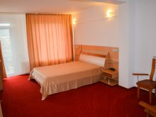 Accommodation Mălureni, Valentina Guesthouse